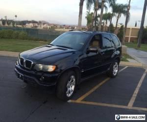 2003 BMW X5 for Sale